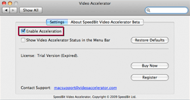 Screenshot of 'Enable Acceleration' option in Video Accelerator Settings